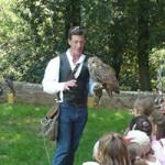 didattica falconeria scuole