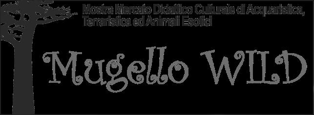 Mugello Wild